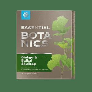 Гинкго билоба и байкальский шлемник — Essential Botanics